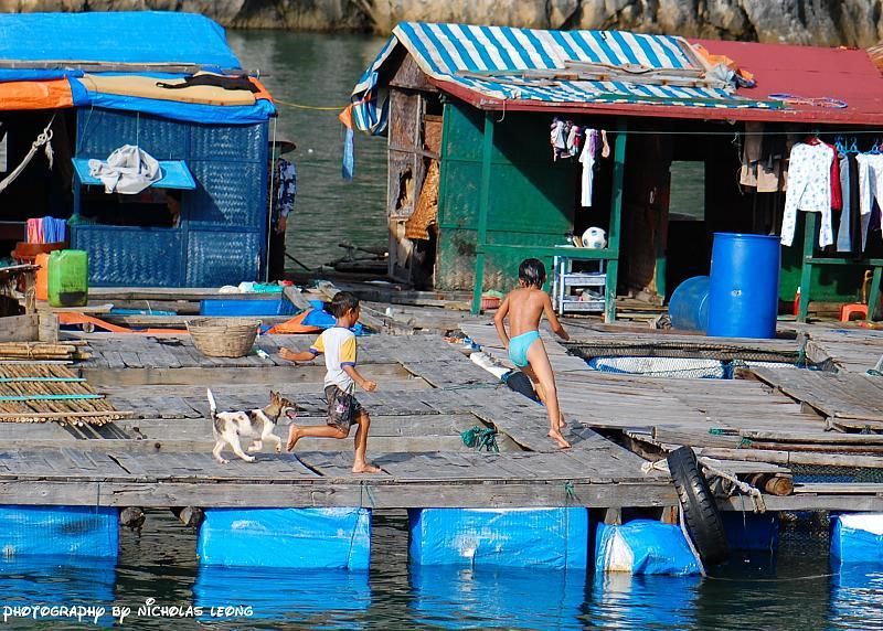 Halong Bay - Vietnam 2832456432_dbc48d283e_o