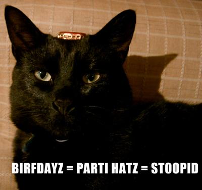 Parti Hatz = Stoopid