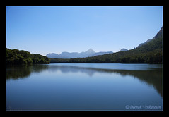 Thunakadavu Dam (deepurocks) Tags: nature forest river view dam wildlife kerala jungle sanctuary ecotourism parambikulam puzha thunakadavu kuriarkutti