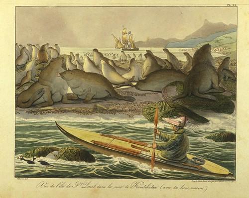 015- Vista de la isla de San Paul con leones marinos