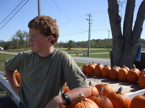 pumpkin stand 011