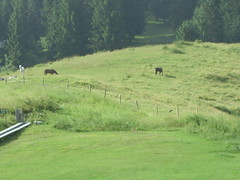 asiago3 (nicovilla) Tags: asiago