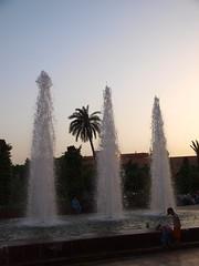 P7041829 (Trysk ) Tags: sahara desert oasis morocco maroc atlas marrakech majorelle souk menara koutoubia palmeraie oued jaamalelfna