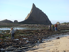 MartinsBeach_2007-008 (Martins Beach, California, United States) Photo