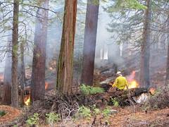 Fire Yosemite