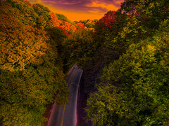 dark forest (paul bica) Tags: pictures road trees sky hot color colour art nature colors beautiful beauty clouds digital fore