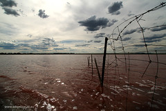 Lake Bolac (Adam Dimech) Tags: sunset cloud lake reflection water fence ripple horizon farming australia victoria environment agriculture bacteria microbiology lakebolac westerndistrict cloudage bolac anaerobic anaerobe