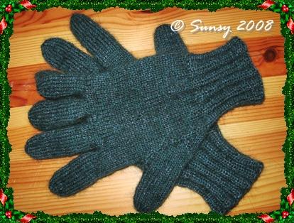 fingerhandschuh2008.1