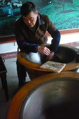 tea plantation in hangzhou (gunp0wder) Tags: china family littleoldman pointandclick