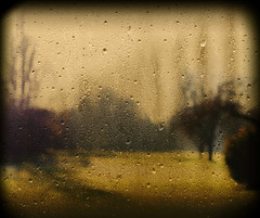 """""""More than yesterday, less than tomorrow."""" (Che-burashka) Tags: trees abstract glass rain landscape bravo weekend condensation gettys fivestarsgallery mondocafeclub gettyskn"""