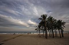 Una tarde en la playa (Leandro MA) Tags: canon 40d leandroma