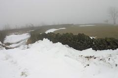 Snow in Capel Brithdir lane, Friday 20th February 2009. (Parishes of the Buzzard) Tags: snow wales olympus deri brithdir c4040z