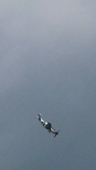 P-51 Mustang (Little Chubby Panda) Tags: aircraft airshow mustang p51 p51mustang jsoh andrewsairforcebase jointserviceopenhouse jointserviceopenhouse2011 jsoh2011