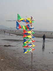 colorful Kite on Beach