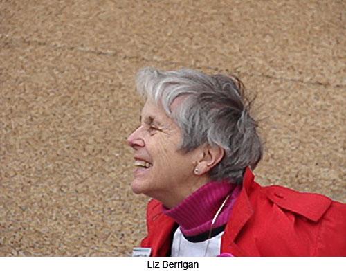 Liz-Berrigan