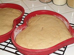 2008 03 - DB White Cake (5)