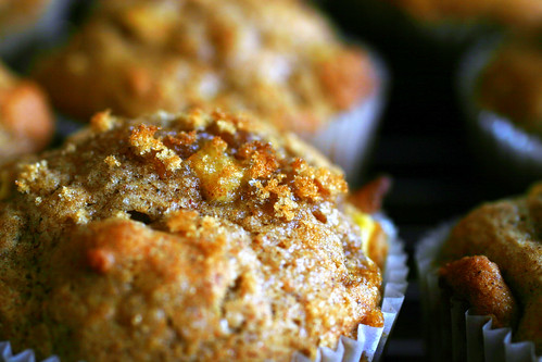 whole wheat apple muffins | Fashion of Luxury
