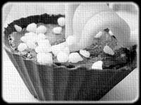 Petits pots de muguet (VGL) 2436136787_b4aa129049_o
