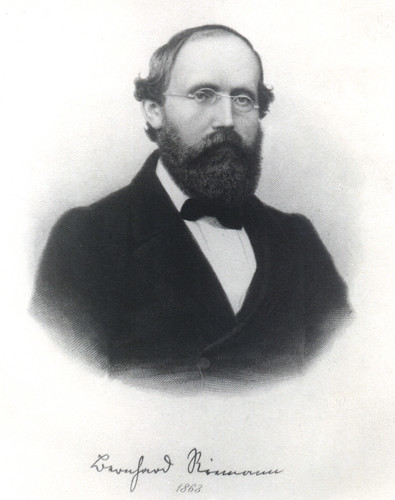 Portrait of Bernhard Riemann (1826-1866), Mathematician