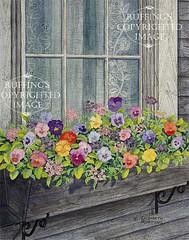 """Window Box with Pansies"" Watercolor by Elizabeth Ruffing"