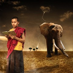 The reader (Chopak) Tags: boy portrait sky elephant tree texture photoshop square landscape reading book kid buddhist surreal monk tibetan freetibet jewelryornaments thunders oldpaper darkcolors jotblog infinestyle dreamwatcher stealingshadows 2bdasest hourofthesoul dreamwatchers obramaestra truthandillusion