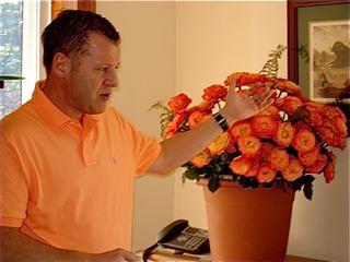 seminar-roses