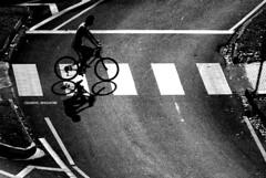 gap (frozenjester) Tags: road street shadow people bike bicycle blackwhite nikon singapore crossing circles stripes streetphotography pedestrian numbers biker d200 nikkor 88 169 clementi dx anamorphic pedestrianlane modeoftransport meansoftransport conceptualimage 70300f456 funcontest cropsensor zebralines pedestiranlane winnerbc