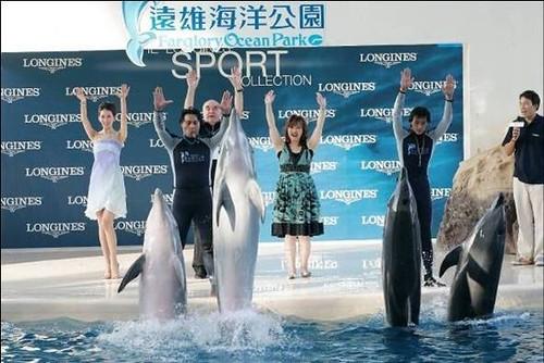 遠雄花蓮海洋公園海豚秀