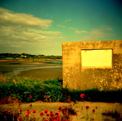 find me a still quiet place (microabi) Tags: county pink flowers blue ireland sky beach bay holga cork kilbrittain