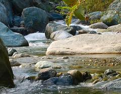l'acqua scarseggia!!! (montecani) Tags: nature natura acqua montagna ayas valledaosta valdayas abigfave miscellanea1 araquem montecani acuqua