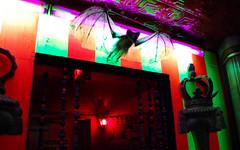 CIA2 (creaturetheatre) Tags: shadow rose circus cia arts nora uni lux dottie abnormal ukelele kimberlee puppetry keyes