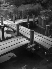 Walkway (bdaryle) Tags: bridge blackandwhite bw lake reflection water gardens blackwhite dock path northcarolina trail posts planks dukegardens dukeuniversity blackwhitephotos brandondaryle bdaryle imagesbybrandon