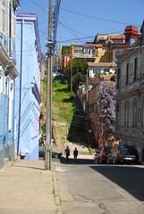 Grassy Road, Valparaiso