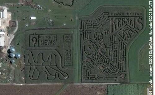 Bloomsbury Farm Corn Maze