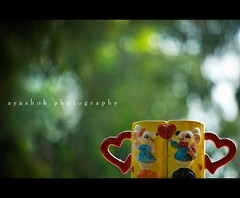 Lovely or Bokely? (ayashok photography) Tags: love cup nikon heart bokeh hbw nikonstunninggallery nikond40 ayashok nikor55200mm