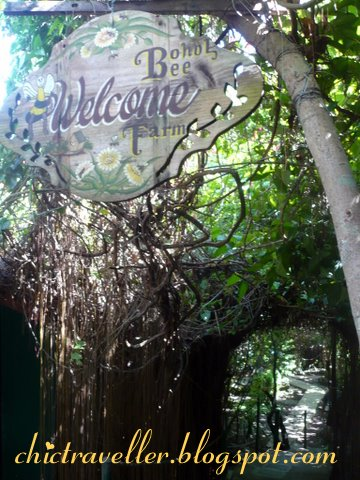 Welcome to Bohol Bee Farm
