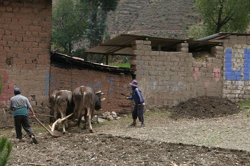 Farmers near Urcos, Peru.