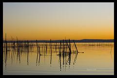 Atardecer del dia 14-Albufera (Pepelahuerta) Tags: paisajes valencia canon agua d 400 reflejos albufera pepelahuerta