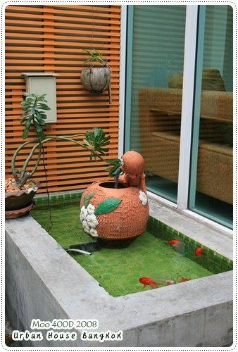 Urban House 魚池