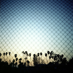 Good Morning SoCal (AAGCTT) Tags: california blue sky 6x6 film mediumformat losangeles pasadena expiredfilm kodakportra100t tungstenbalanced