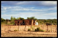 Mud Houses on the Way (Raul Cortijo) Tags: argentina sanjuan pfogold pfosilver