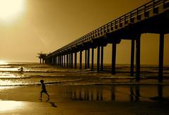 San Diego - Redux (Universal Stopping Point) Tags: ocean california sun beach pier kid waves child pacific sandiego surfer lajolla slightlycroppedtofitratiosharpenedsepiadarklevelsupped