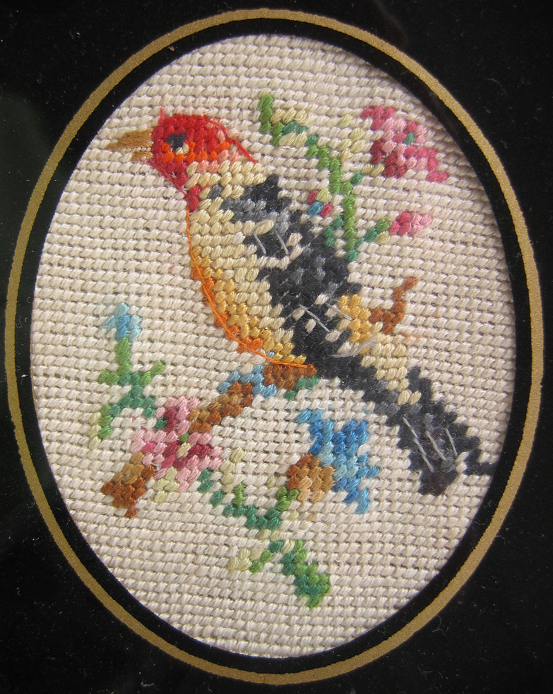 petit point unidentified bird