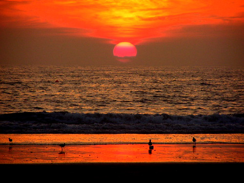 la_beach_sunset