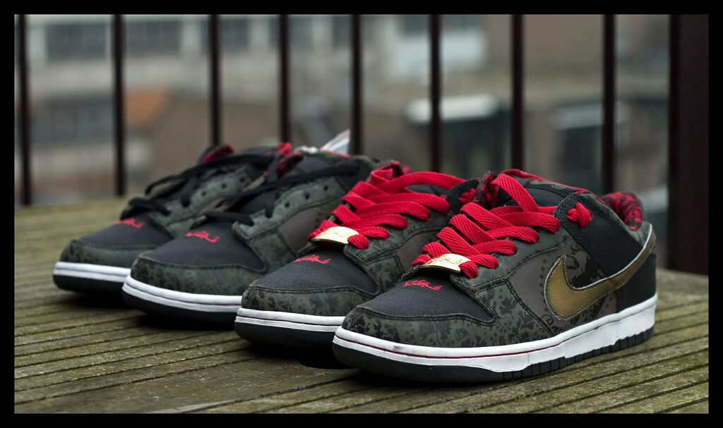 the latest 8afbf 1b187 ... nike sb dunk x SBTG (Tsewang K.) Tags basketball shoe 50mm fantastic ...