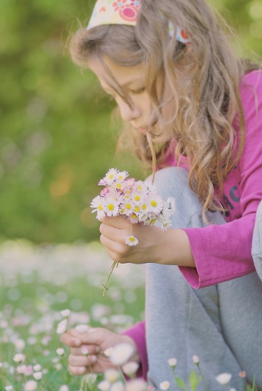Kópia – kvet (3)