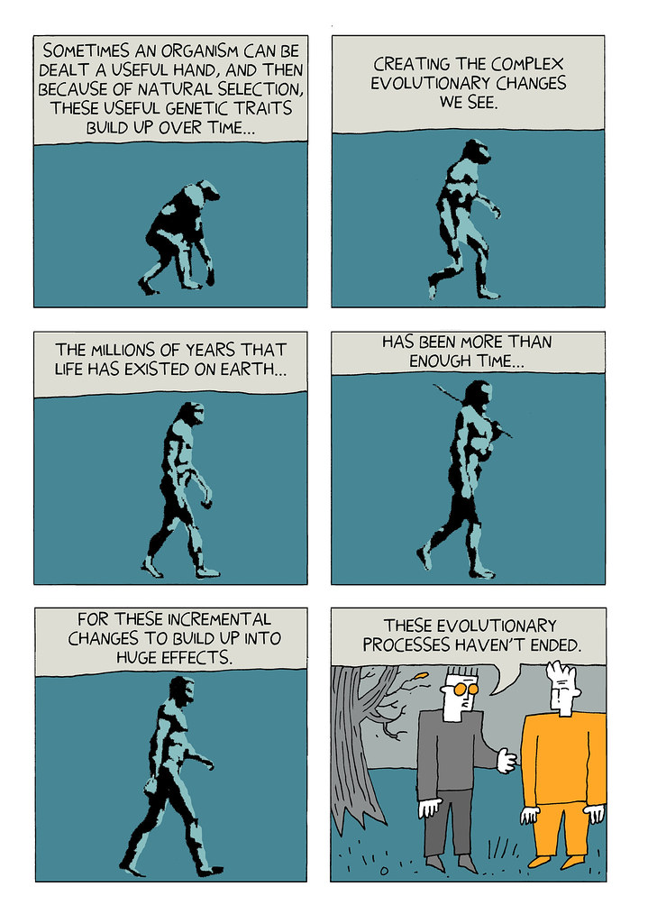 Darryl Cunningham Investigates Evolution - 21 designer problems turned into funny comics that tell the absolute truth