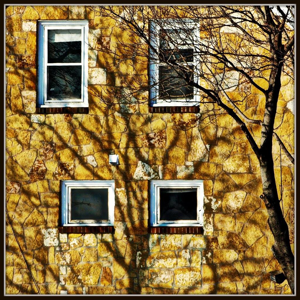 Shadows and Windows