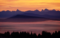 Fraser Valley Sunrise 2 (justb) Tags: pink trees sunset red orange mist mountain mountains film colors yellow misty fog print landscape colorful bc purple foggy valley layers fraser chilliwack firey mountainscape artisticexpression justb abigfave betterthangood