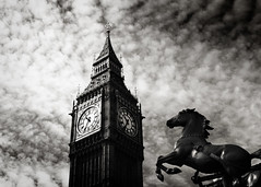 Charge! (conorwithonen) Tags: london this see day you bigben every dont blackbeauty palaceofwestminster leicam8 horserearing